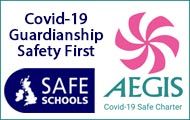 covid-19 safe guardianship